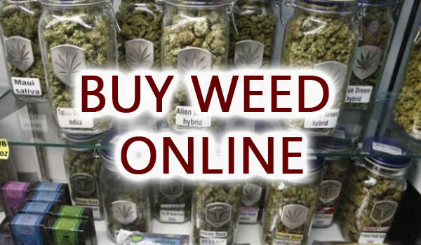 Everyone should know the best site for Buy Weed Online