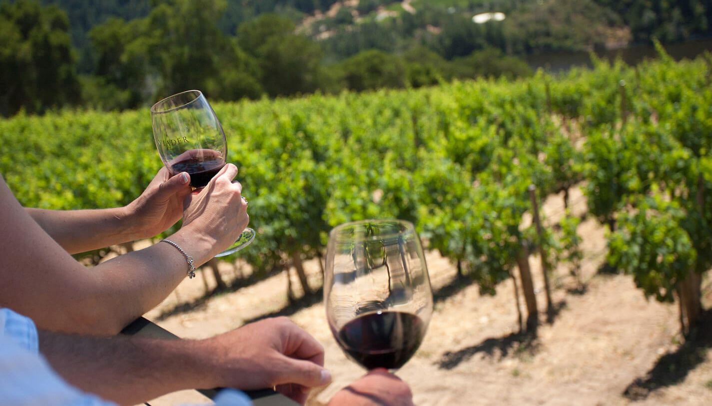 Wine & Food Experience Benefits in Tuscany