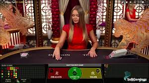 The following is what you must understand about online casinos
