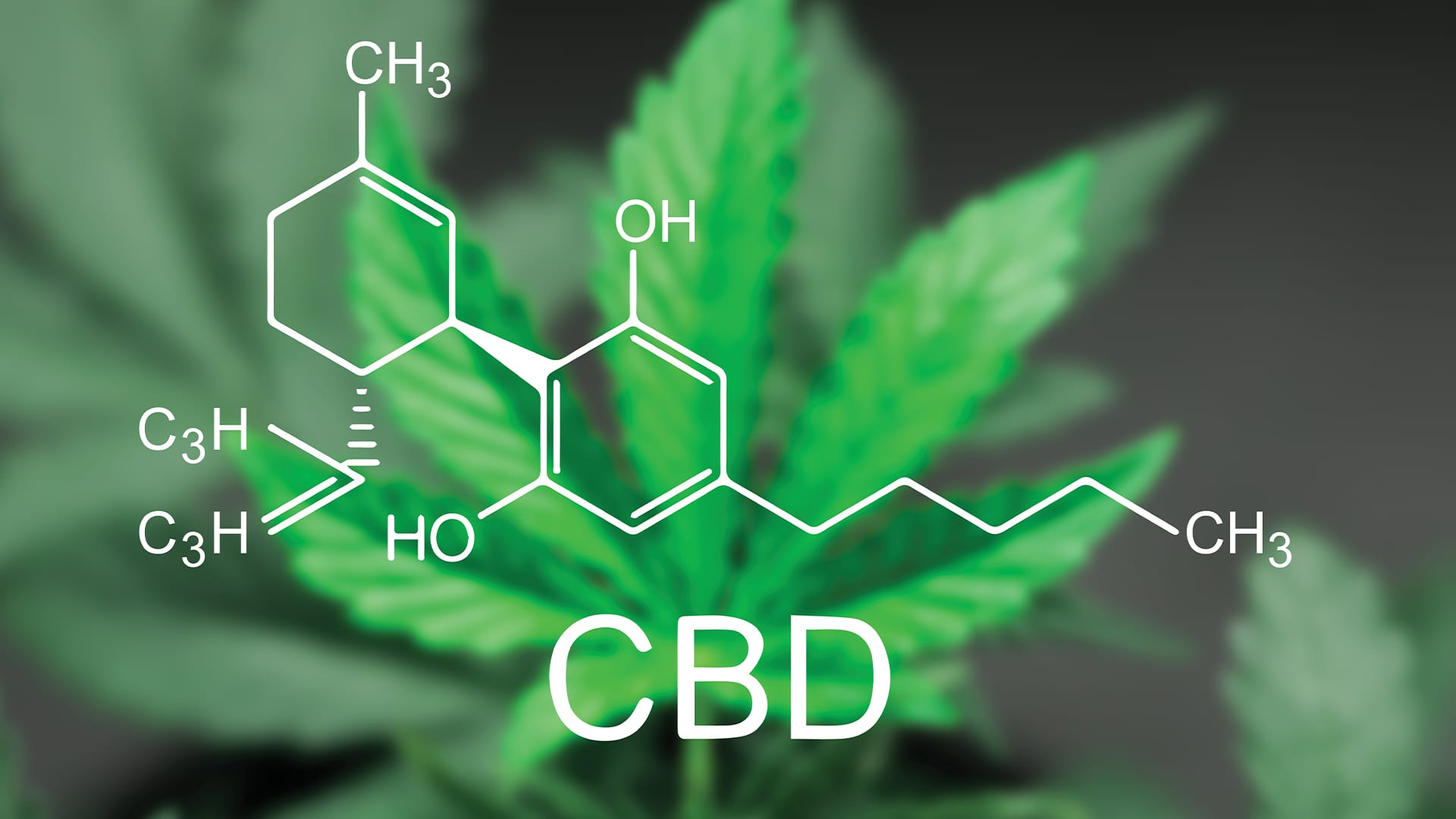 Varieties of CBD Goods as well as How you can Rely on them